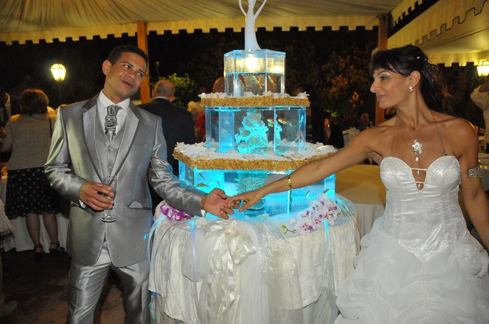 Matrimonio Acquario Romano : Crystal torta acquario matrimonio a sorrento